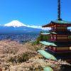 富士山と桜を日本一綺麗に眺められる場所を目指してチャリ350km!